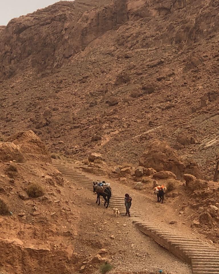 Todra Gorges trekking